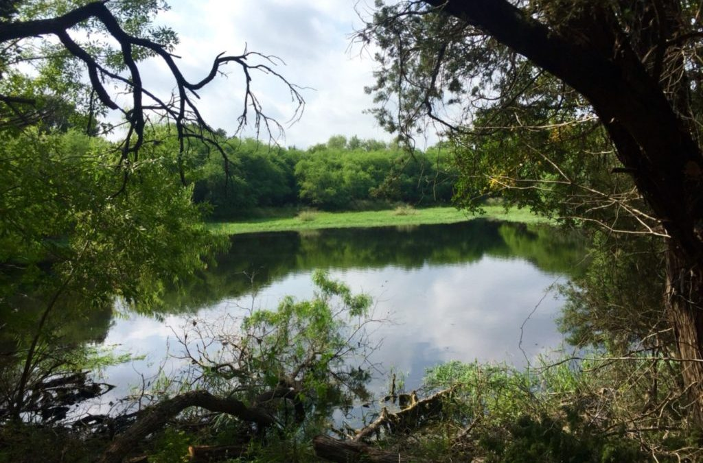 Lockett Nature Preserve