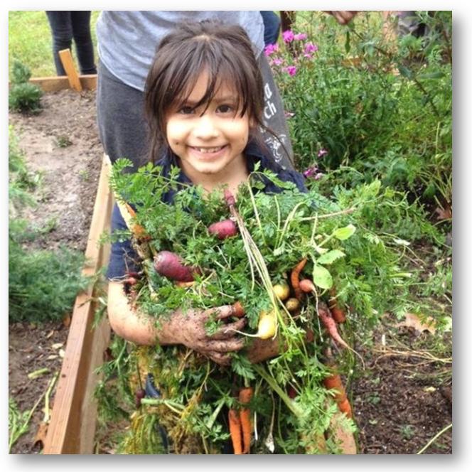Little Sprout Urban Garden Summer Camp for Kids
