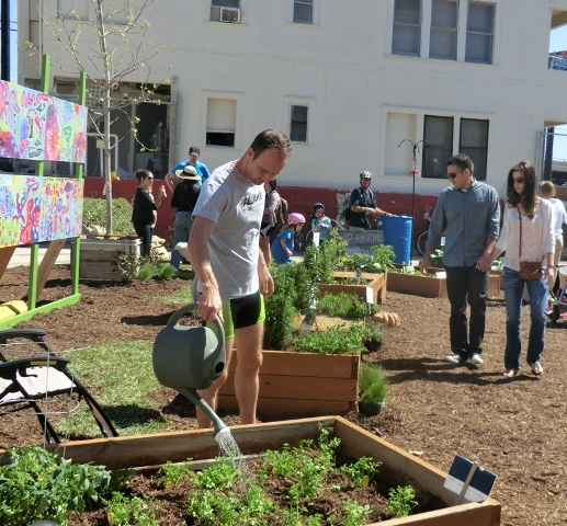Low Impact Development and Green Infrastructure