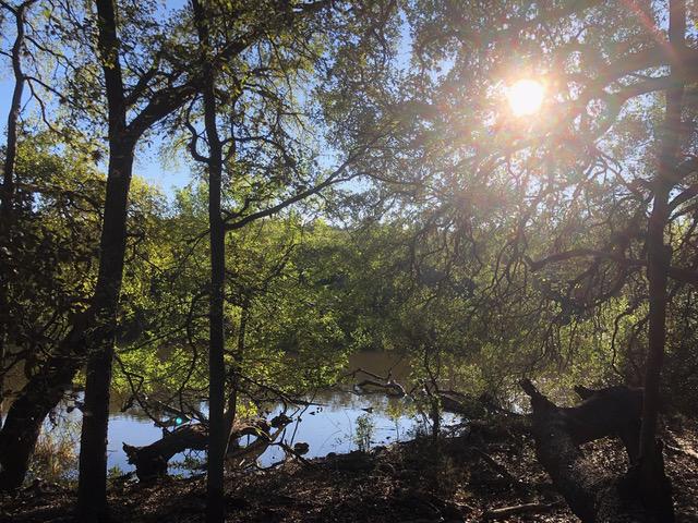UpcomingNature Hike